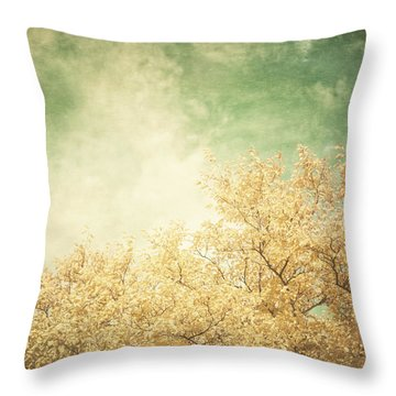 Vintage Autumn Throw Pillow by Lisa Russo
