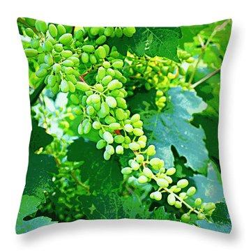 Vintage Vines  Throw Pillow by Carol Groenen