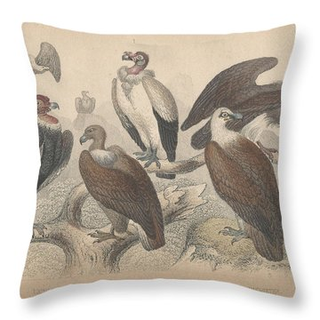 Vultures Throw Pillow by Oliver Goldsmith