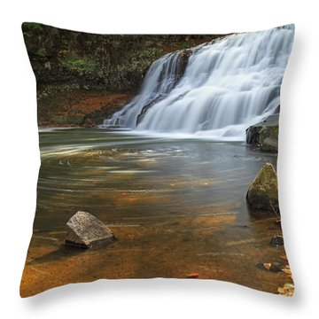Wadsworth Falls Throw Pillow by David Freuthal