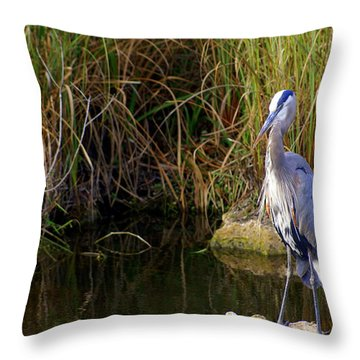 Waiting Throw Pillow by Marty Koch