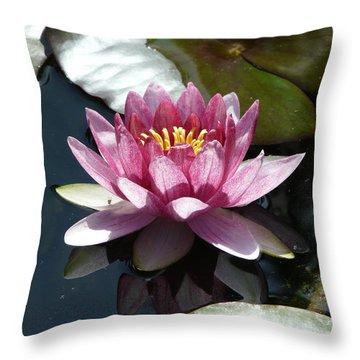 Water Lily 2 Throw Pillow by Valerie Ornstein