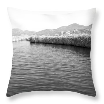Water Scene In B And W Throw Pillow by Svetlana Sewell