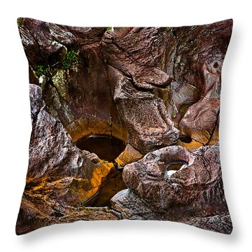 Water Sculpted Throw Pillow by Christopher Holmes