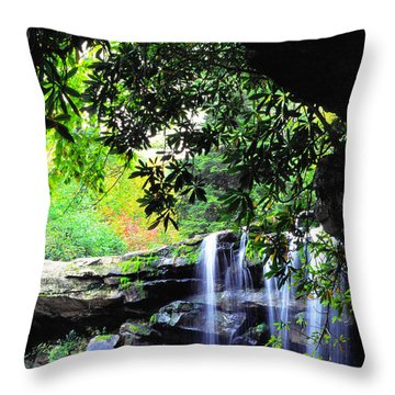 Waterfall And Rhododendron Throw Pillow by Thomas R Fletcher