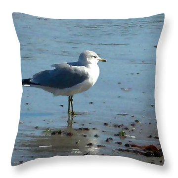 Wet Feet Throw Pillow by Paul Sachtleben
