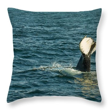 Whale Throw Pillow by Sebastian Musial