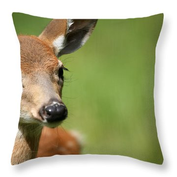 What A Face 1 Throw Pillow by Karol Livote