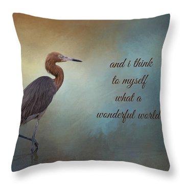 What A Wonderful World Throw Pillow by Kim Hojnacki