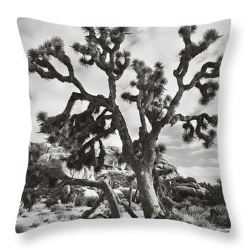 What I Wouldn't Give Bw Throw Pillow by Laurie Search