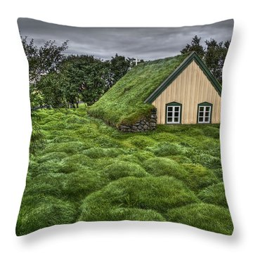 When Heaven Calls Your Name Throw Pillow by Evelina Kremsdorf