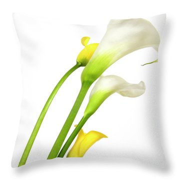 White Arums In Studio. Flowers. Throw Pillow by Bernard Jaubert