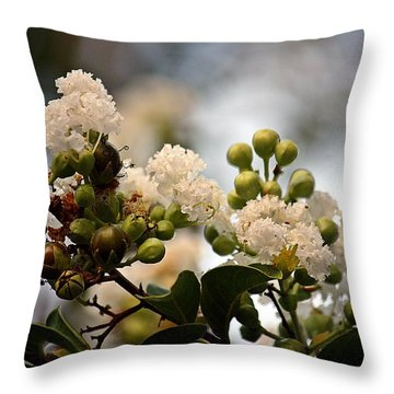 White Crape Myrtle- Fine Art Throw Pillow by KayeCee Spain
