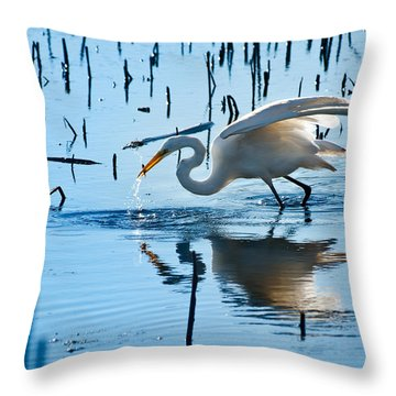 White Egret At Horicon Marsh Wisconsin Throw Pillow by Steve Gadomski