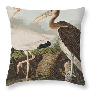 White Ibis Throw Pillow by John James Audubon