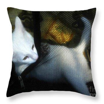 White Kitten Throw Pillow by David Lee Thompson