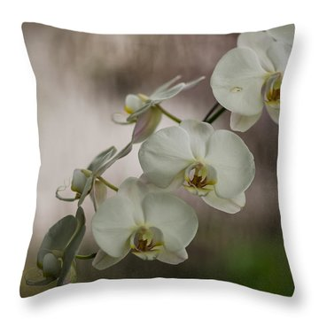 White Of The Evening Throw Pillow by Mike Reid