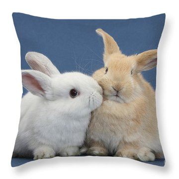 White Rabbit And Sandy Rabbit Throw Pillow by Mark Taylor