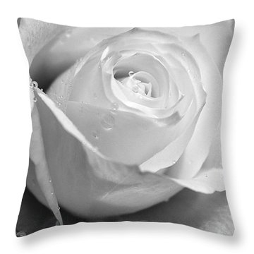 White Rose Throw Pillow by Brian Roscorla