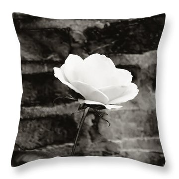 White Rose In Black And White Throw Pillow by Bill Cannon