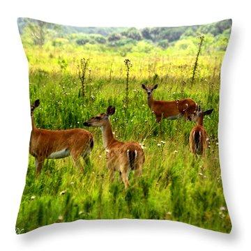 Whitetail Deer Family Throw Pillow by Barbara Bowen