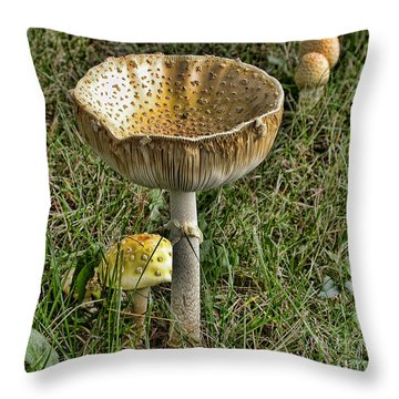 Wild Mushrooms Throw Pillow by Edward Sobuta