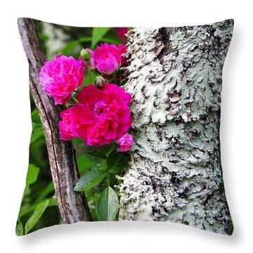 Wild One Throw Pillow by Thomas R Fletcher