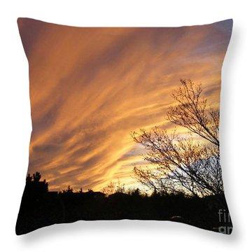 Wild Sky Of Autumn Throw Pillow by Barbara Griffin