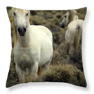 Wild Stallion Throw Pillow by Marty Koch