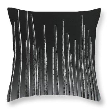 Wind Organ Throw Pillow by Wim Lanclus