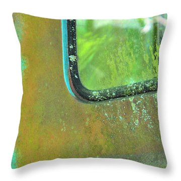 Window To The Past Throw Pillow by Jan Amiss Photography