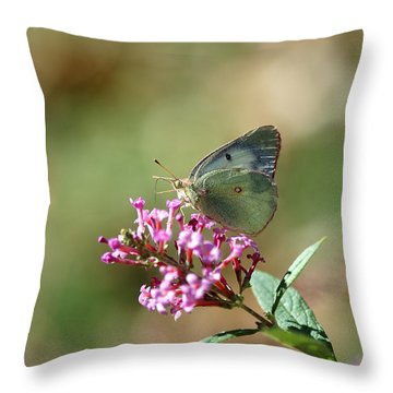Wings And Petals Throw Pillow by Betty LaRue