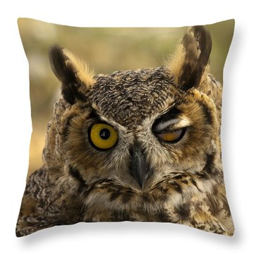 Wink Throw Pillow by Mike  Dawson