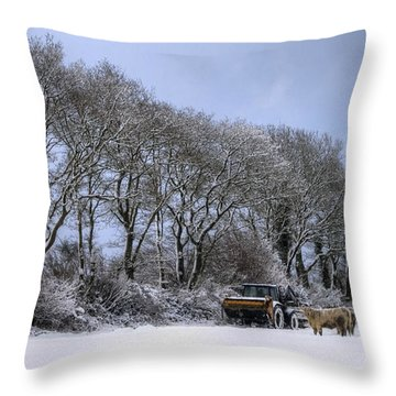 Winter Morning On The Farm Throw Pillow by Sophie De Roumanie