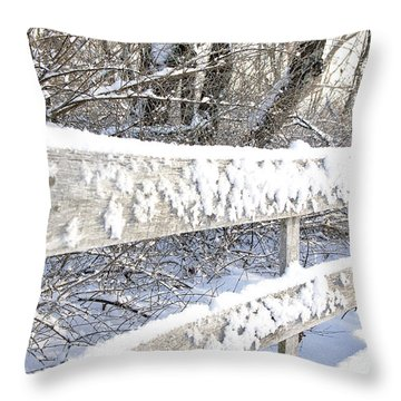 Winter Morning Throw Pillow by Thomas R Fletcher