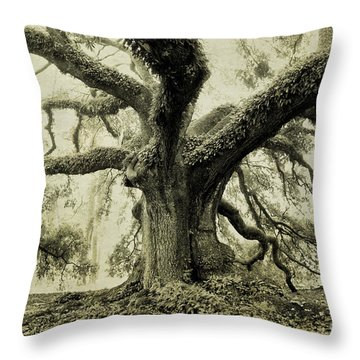 Winter Oak Throw Pillow by Scott Pellegrin