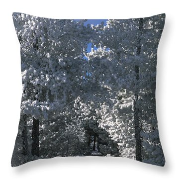 Winter Pathway Throw Pillow by Sandra Bronstein
