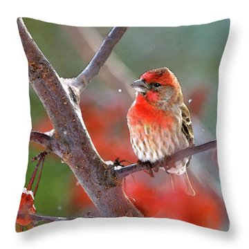 Winter Red Throw Pillow by Betty LaRue