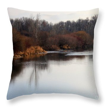 Winter Riverbank Throw Pillow by Carol Groenen