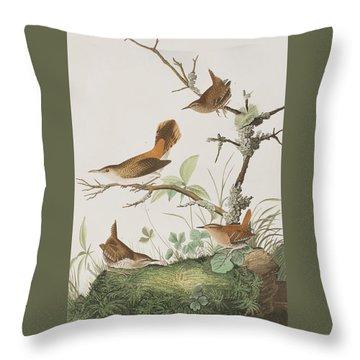 Winter Wren Or Rock Wren Throw Pillow by John James Audubon