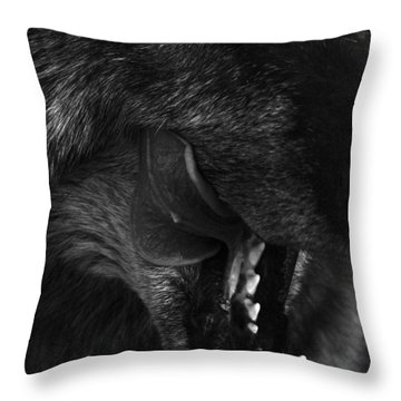 Wolf Close Up Throw Pillow by Dawn Kish