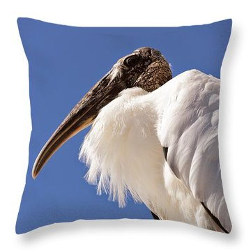 Wonderful Wood Stork Throw Pillow by Carol Groenen