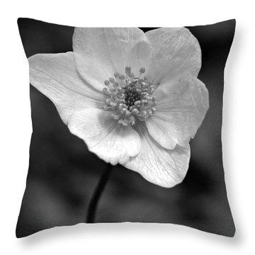 Wood Anemone 6 Throw Pillow by Jouko Lehto