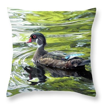 Wood Duck Throw Pillow by Al Powell Photography USA
