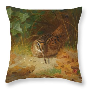 Woodcock Throw Pillow by Celestial Images