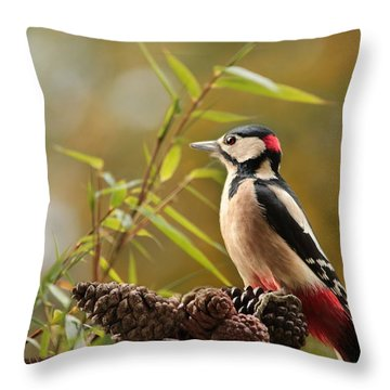 Woodpecker 3 Throw Pillow by Heike Hultsch