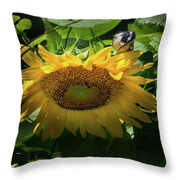 Woodpecker Delight Throw Pillow by Bill Wakeley