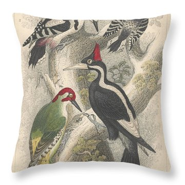 Woodpeckers Throw Pillow by Oliver Goldsmith