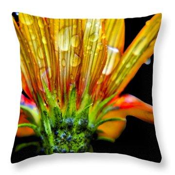Yellow And Orange Wet Zinnias. Throw Pillow by Elizabeth Greene