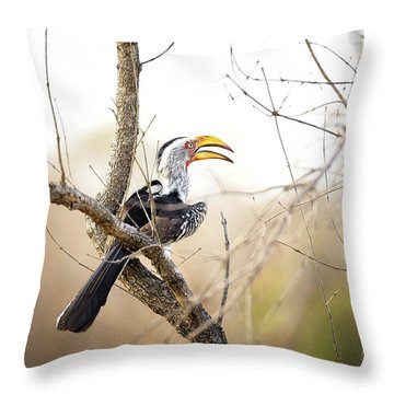 Yellow-billed Hornbill Sitting In A Tree.  Throw Pillow by Jane Rix